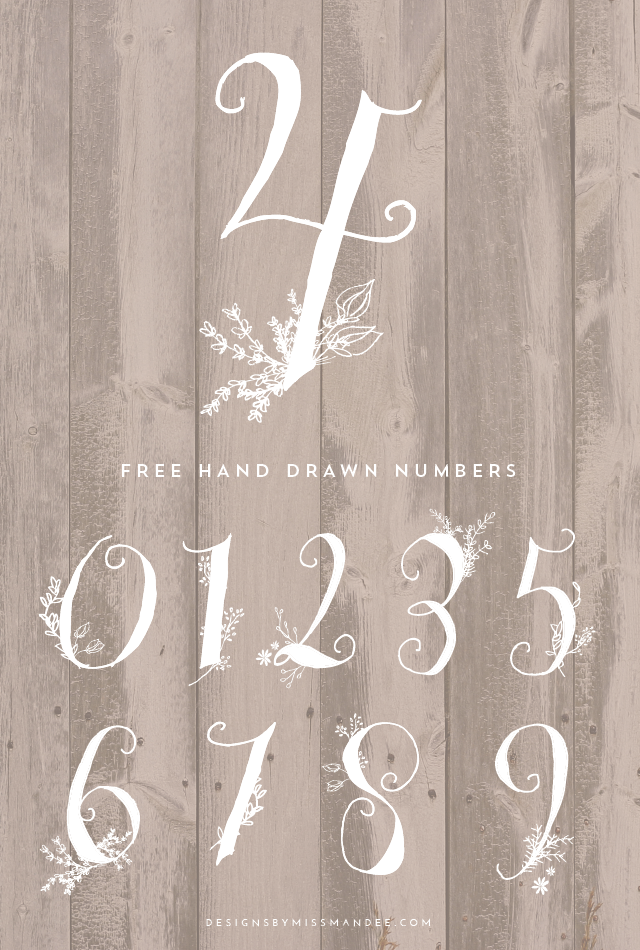 Stunning Hand Drawn Numbers