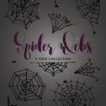 Spider Web Collection