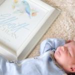 Baby Stats Wall Art