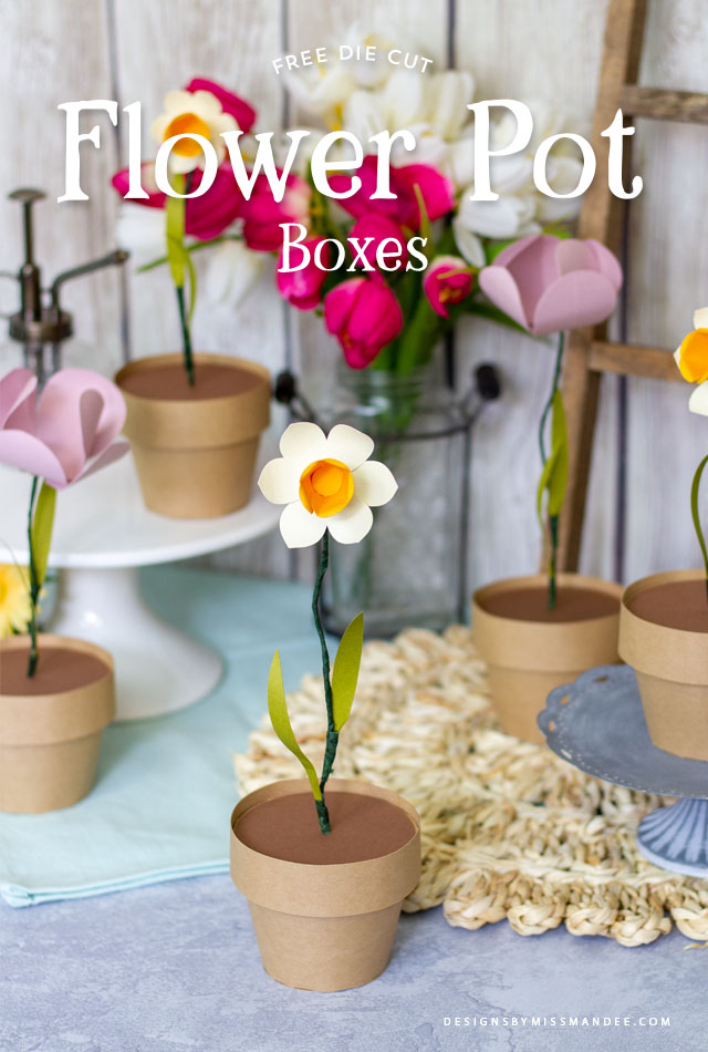 Flower Pot Boxes