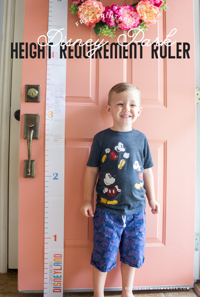 Disney Park Height Requirement Ruler